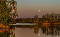 Twilight islands (piotrekfil) Tags: sunset sky moon lake tree nature water forest wow reflections landscape twilight pentax poland piotrfil