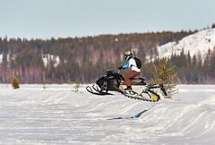 Stephen M. Fochuk 862_a (Stephen M. Fochuk) Tags: winter snow jump action sunny northwestterritories snowmobile skidoo yellowknife greatslavelake afsnikkor600mmf4gedvr longjohnjamboree