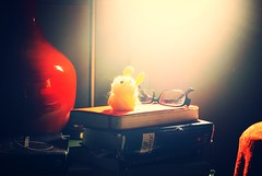 Some of my Stuff (jacobusswart85) Tags: light shadow red black moleskine lamp contrast toys reading glasses chair warm diary books clay bible vase bedside warmlight softtoy liverecovery