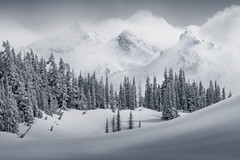 Winter Triplets (Michael Bollino) Tags: winter snow storm nationalpark nikon alpine mountrainier pacificnorthwest washingtonstate clearing clearingstorm