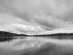 Loch a'Clachain (spodzone) Tags: camera blackandwhite art nature monochrome beautiful lines composition lens landscape photography scotland highlands emotion affection unitedkingdom places calm equipment filter zen vista dreamy balance serene moment idyll toned contrasts tranquil contentment elegance gbr dores digikam landwater olympuspenf skyearth shapeandform rawconversion rawtherapee naturehappens calmstill lochshore lochaclachain digitalgradnd olympus714mmf28