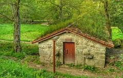 En armonia con la naturaleza (CELTARRO) Tags: galicia