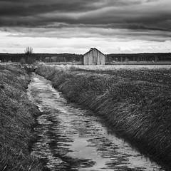 Sderfjrden (mattias.ljunggren) Tags: bw monochrome clouds barn finland spring lada agricultural vr ker moln svartvitt sterbotten ostrobothnia sderfjrden sonya7