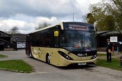 37423 YX65PYZ (PD3.) Tags: show city west bus heritage buses pits museum vintage sussex chalk coach centre kings preserved mmc enviro psv pcv amberley adl kingscity 37423 pyz yx65 yx65pyz