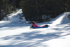 Using the sled (Aggiewelshes) Tags: travel winter snow april snowshoeing wyoming jacksonhole colterbay jovie grandtetonnationalpark 2016 gtnp