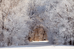 Frosted Tunnel (Zack Mensinger) Tags: winter minnesota eos midwest frost hoarfrost 2016 westernminnesota canon5dmarkii