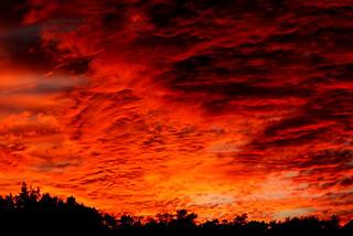 Flaming Texas Sky
