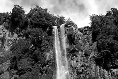 Waterfall Milford Sound (christiane.grosskopf) Tags: newzealand blackandwhite blackwhite waterfall wasserfall milfordsound schwarzweiss neuseeland nikond80