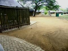 Satara Rest Camp. (Bruwer Burger.) Tags: camp rest satara