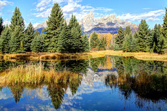 The Grand Tetons From Schwabacher's Landing (Robert F. Carter Travels) Tags: mountains reflections nationalpark evergreens nationalparks mountainscape grandtetonnationalpark schwabacherslanding