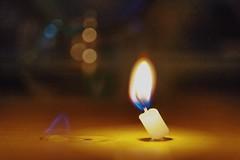 《暖燭》-Warm light (AllenPan02) Tags: light love fire perfect warm candle sony a7 microshot