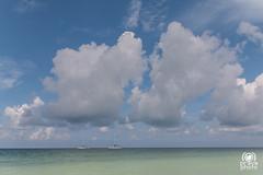 Cayo Blanco (andrea.prave) Tags: sea mer clouds mar meer nuvole mare cuba wolken nubes caribbean ausflug varadero nuages   excursion kuba  caribe matanzas caraibi excursin carabes karibik  escursione    cayoblanco