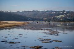 high tide on the usk, caerleon. (andyp178) Tags: water river boats flood debris floating usk hightide d3100