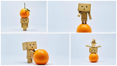 Danbo say:happy chinese new year 2016~ (Andy-Hsieh) Tags: new happy year chinese 2016 danbo