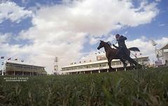 ! (Meshari Fahad) Tags: blue horses beauty festival clouds arabian riyadh loght gopro