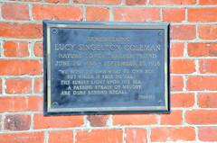 LucySingeltonColeman (T's PL) Tags: brick metal virginia nikon va richmondva d7000 tamron18270 nikond7000 tamron18270f3563diiivcpzd plaquerememberinglucysingeltoncoleman