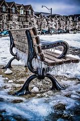 Icy Bench (rakelgoiri) Tags: winter toronto ontario canada cold bench banco icestorm invierno icy icicles frio winterlandscape helada congelado nikond7000