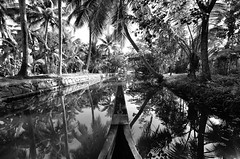 Reflect (parmeetkohli) Tags: mist fish mountains coffee trek peace tea country lakes culture kerala jungle gods own toddy kathakali