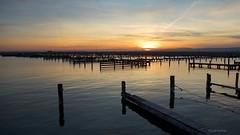 Sonnenuntergang Neusiedlers (Gerald Wollner) Tags: sunset lake landscape austria abend sterreich sonnenuntergang burgenland neusiedlersee abendstimmung neusiedl