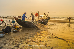 Y8121.0413.Sm Sn.Thanh Ha (hoanglongphoto) Tags: life morning sea sky people sunlight color beach canon asian asia outdoor vietnam draught bin sunriset sunnymorning colorimage mu smsn peoplefishing thanhha nng cucsng bnhminh ithng grouppeople dalylife ngoitri bibin conngi chu ngnam samsonbeach buisng nngsm koli phili cucsngthngngy dnchi canoneos1dx bibinsmsn nhmu canonlensef35mmf14lusm nhmngi peoplesfishing ngidnchi