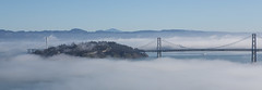 Foggy day on the Bay (DavezPicts) Tags: sanfrancisco ca bridge water fog bay oaklandbaybridge