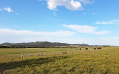 Standen Drive, Lower Belford NSW