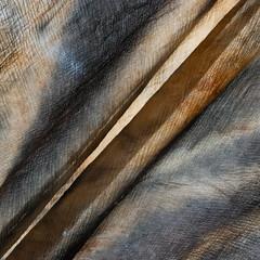 Backlit (jonnydredge) Tags: rust stripes eco blueberries shibori spottedhyenas
