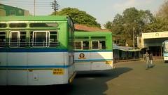 MSRTC Ashok Leyland And Tata Rear View (kunalas440) Tags: volvo scania shivneri msrtc punestation maharashtrastateroadtransportcorporation msrtcbusstand msrtctatabus msrtcashokleylandbus msrtcpushback msrtchirkani