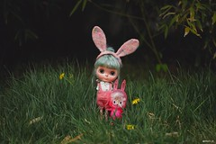 #Blythe #toys #customblythe #MioO_ODolls #OrangeandSpice