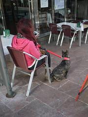 videos 138 (Jusotil_1943) Tags: gente perro mesa pelirroja sillas sentada
