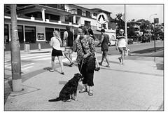 last days of summer  #867 (lynnb's snaps) Tags: 2016 apx100 agfa leicaiiic manly rodinal bw beach film people street blackandwhite blackwhite bianconero noiretblanc monochrome schwarzweis biancoenero 黒と白 bianconegro leica analogue analog lynnburdekinphotography 35mmfilm cv35mmf25colorskopar cv35mmf25colorskoparltm voigtlandercolorskopar35mmf25ltm summer ©copyrightlynnburdekinallrightsreserved rangefinder barnack ishootfilm