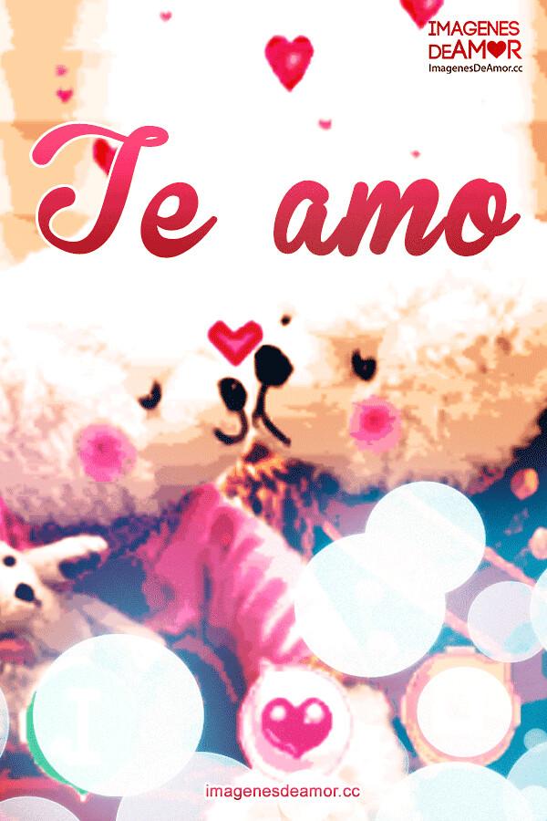 6 Imagen De Tiernos Ositos Con Frase I Love You