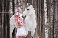 Sylveon & Tanamara 2 (Hestefotograf.com) Tags: show friends summer horse white black girl norway bareback caballo cheval jump mare dress lets hannah go run riding pony barefoot welsh arabian elegant cob bestfriend rider cavallo cavalo pferd equestrian canter equine equus paard equipage skien
