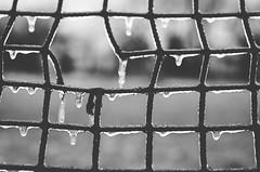"soccer field (Ibi Szabo"") Tags: ice frozen spring wi allrightsreserved 50mmf18 nikond7000"
