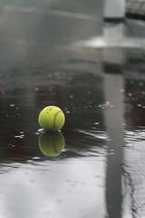 Tennis Anyone? (w.d.worden) Tags: tenniscourt