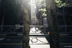Thran (Real Photo // Charleroi) Tags: iran tehran fujinon thran fujixpro1