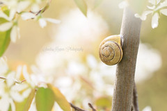 """Go out there, feel life. Touch the sun and immerse in the sea"" (Sandra Kppen 