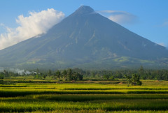 Mt Mayon over green (Laura Jacobsen) Tags: volcano philippines mayon bicol luzon mtmayon legaspi legazpi bicolandia mayonvolcano