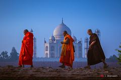 Our Tangerine Path (Shameem Shah) Tags: travel blue orange brown india yellow sunrise walking path faith monk tajmahal agra follow shutterarts