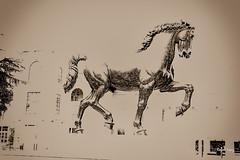 El caballo de Leonardo (libretacanaria) Tags: italy horse caballo italia milano davinci leonardo miln lenonardodavinci