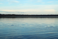 Still Waters at Dawn (amanda_is_wacky) Tags: morning lake peru water reflections amazon peaceful calm blueskies waterscape lakesandoval