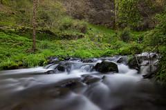 Rapide (galio34) Tags: nature pose eau riviere rapide longue