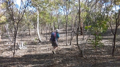 Para Wirra 17 (WEA Ramblers) Tags: hiking australia bushwalking southaustralia parawirra yattalunga fayharding
