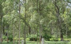 2475b Old Tenterfield Road, Rappville NSW