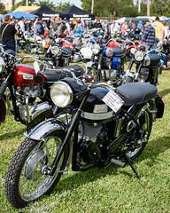 DSC_9139-16 (DanGarv) Tags: florida motorcycleshow dania vintagemotorcycle mortorcycle classicbike daniabeach antiquemotorcycle d810