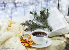 Romantic christmas still ife with cup of coffee (CreativePhotoTeam.com) Tags: christmas new xmas morning winter stilllife food orange brown white holiday snow hot tree home cup window coffee closeup comfortable fruit season table lights book design sticks holidays december drink decorative cinnamon background traditional spice rustic decoration celebration homemade ornament mug romantic stick citrus decor aromatic handycraft aroma