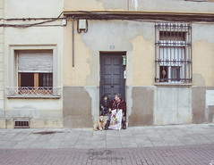El Portal (Sergio Bjar) Tags: barcelona street urban dog dogs calle tres perros sant antoni tombs abad documental ripollet reportaje trestombs streetphotogaphy