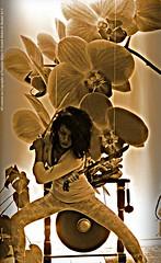 Parang Sepasang (paureh raso) Tags: vienna wien orchid girl fashion sumatra indonesia austria sterreich exercise orchidaceae katze meditation frau combat gaze puti defense gong melayu bukittinggi ono silat orchideen alang agam riau wanita kampfkunst lading cantik latihan harimau tarian minang golok persembahan gadis minangkabau pentjak cewek vorwrts silek hormat selbstverteidigung pencaksilat cibatu westsumatra angrek pendekar penchak indonesische pmgsentak sentak pandeka indonesischekampfkunst babega pandekamihar nahkampfausbildung pendekarputi ladiang