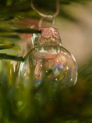 Bauble (Spannarama) Tags: macro tree closeup shiny pretty bokeh christmastree christmasdecorations bauble christmastreedecorations