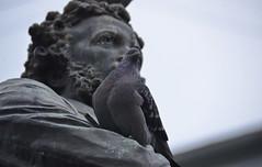_DSC4766 (Rustam Bikbov) Tags: december saintpetersburg monuments pushkin 1884 2015